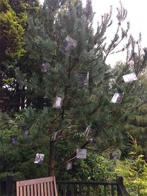 December 2016: Tree of Remembrance in Devon, England