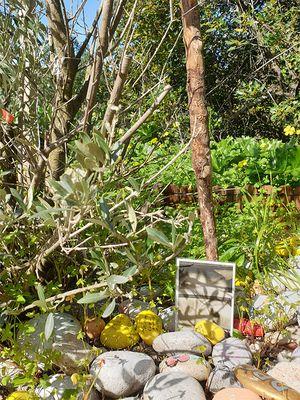 February 2020: Animal Memorial in Gibraltar