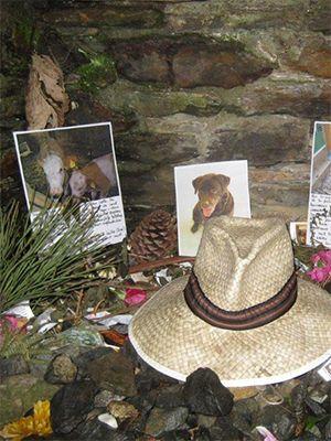 June 2010: Pilgrims for Animals – Camino de Santiago in Spain