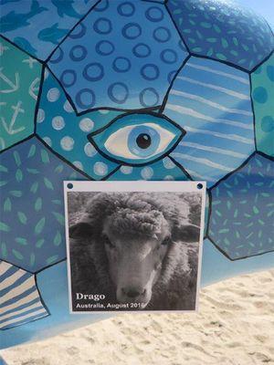 February 2018: Animal Memorial at Swan River, Perth, Australia