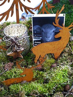 December 2017: Animal Memorial in Switzerland