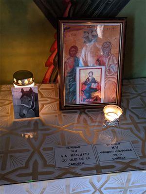January 2020: Animal Memorial in Romania