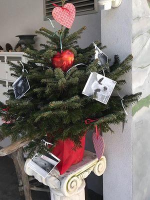 December 2017: Christmas Tree of Love in Klosters, Switzerland