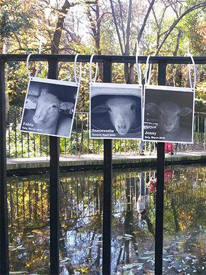 December 2017: Animal Memorial in Madrid, Spain