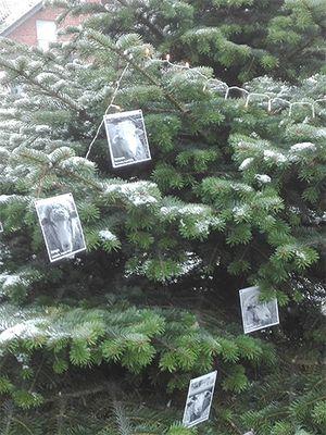 December 2017: Christmas Tree of Love in Germany