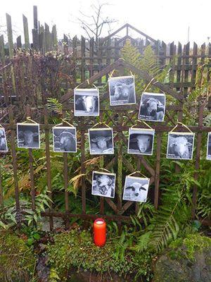 December 2017: Animal Memorial in Mücke, Germany